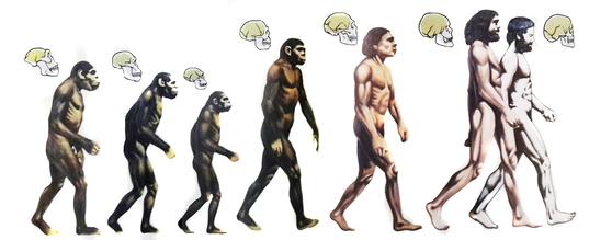 유인원에서 비롯된 현생 인류는 늘 과거를 통해 미래를 내다봤다. 지난 일은 돌이킬 수 없지만, 다가올 일은 대비할 수 있기 때문이다. [중앙포토]
