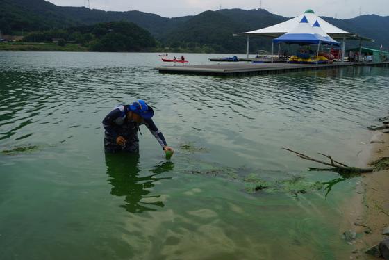 지난해 7월 구지오토캠핑장 인근 낙동강에 짙은 녹조가 발생했으나 수상 레저활동은 규제가 없이 진행되고 있다. 강찬수 기자