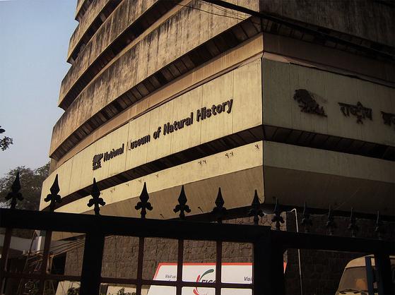 인도 뉴델리 국립 자연사 박물관 [위키피디아]
