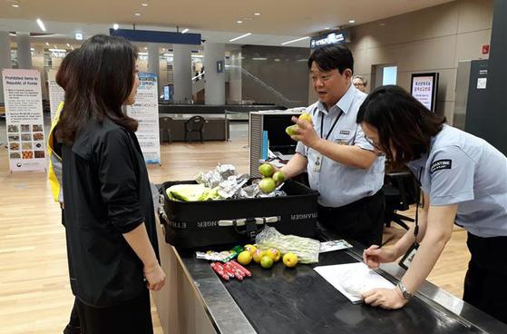 중국 여행객이 반입한 축산품에서 아프리카 돼지 열병 유전자가 검출되며 검역이 강화됐다. [뉴시스]