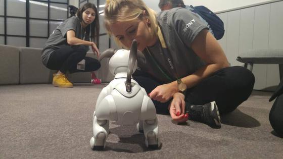 소니가 유럽에서 처음 선보인 강아지 로봇 아이보는 관람객에게 인기가 높았다.