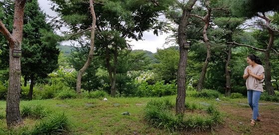 인천가족공원의 솔향기 수목장. 친자연적 분위기가 호응을 얻어 분양이 끝났다. 장세정 기자