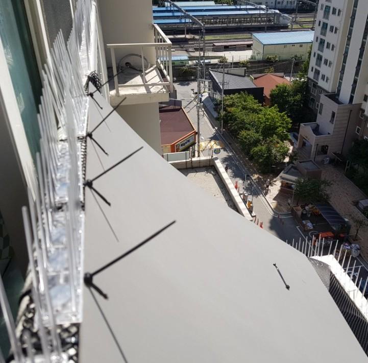 아파트 베란다의 비둘기 집을 제거한 뒤 판넬과 스파이크를 설치한 모습 [사진 구구가가]