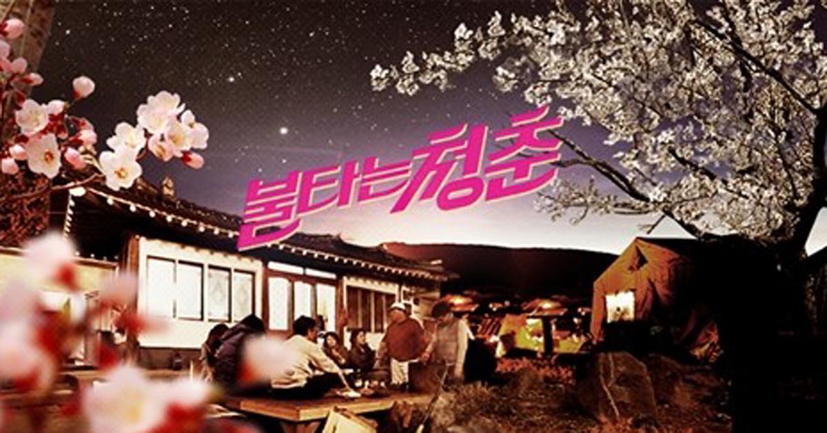 SBS 예능프로그램 '불타는 청춘' [SBS 홈페이지 캡처]