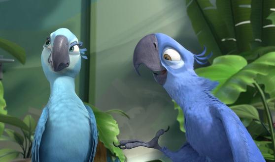 스픽스 마코 앵무새를 모델로 한 애니메이션 '리오'의 한 장면. [중앙포토]