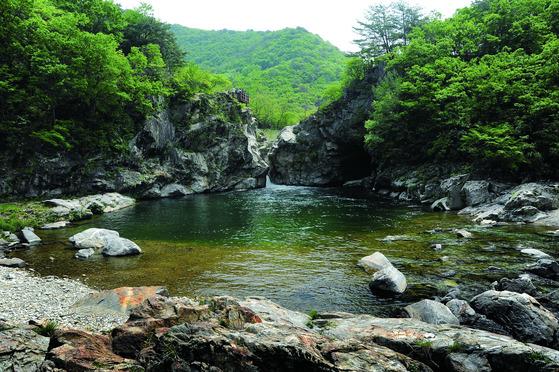 민통선 북방 열목어 최대 서식지로 알려진 양구 두타연. [사진 환경부]