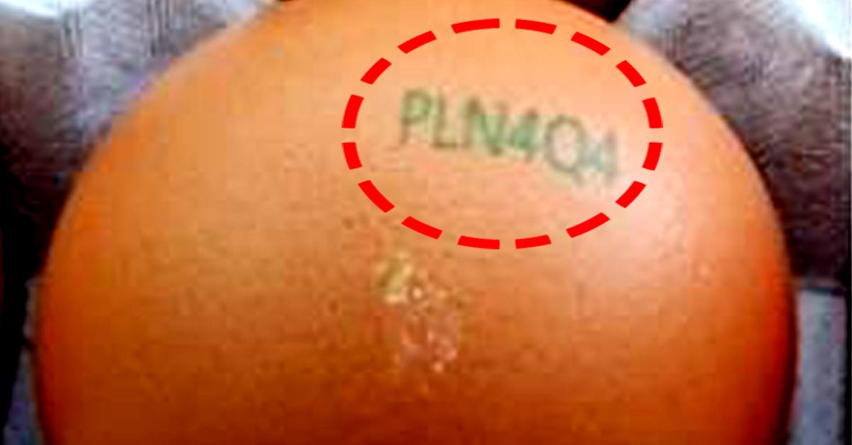 강원도 철원의 한 산란계 농가가 생산한 계란에서 품질 부적합 계란이 발견됐다. 난각 코드는 'PLN4Q4'다. [사진 농림축산식품부]