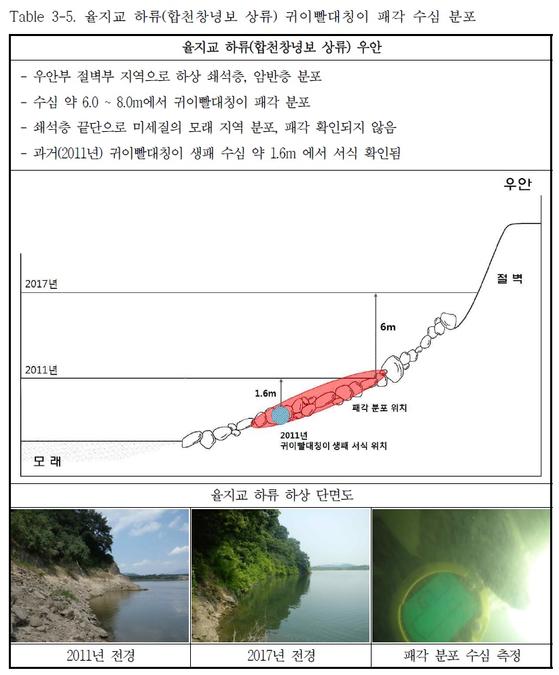 수심변화와 귀이빨대칭이. 2011년 귀이빨대칭이가 발견된 곳은 수심이 1.6m였으나, 지난해에는 수심이 7.6m로 깊어졌고 귀이빨대칭이도 발견되지 않았다. [자료 국립환경과학원]