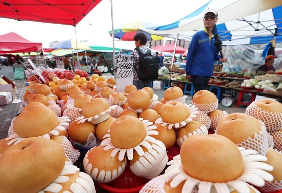 14일 오전 경기도 성남시 중원구 모란시장에서 시민들이 추석을 앞두고 제수용품 등을 구매하기 위해 둘러보고 있다. [뉴스1]