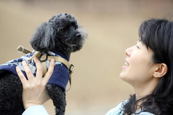 나이 많은 우리 강아지, 핀테크 덕에 보험 가입한다