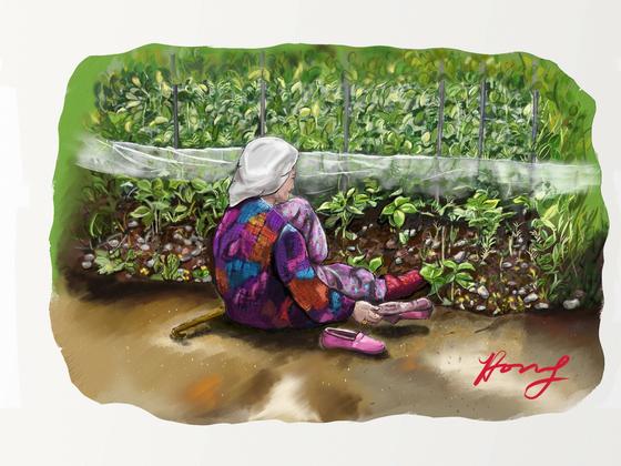 집 앞 텃밭에서 소일 중이신 어머니 by 갤럭시 노트5 S노트. [그림 홍미옥]