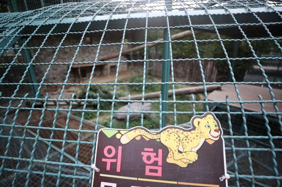 18일 대전동물원에서 암컷 퓨마 1마리가 탈출해 경찰과 소방당국이 수색 중이다.   사진은 퓨마가 탈출해 텅 빈 사육장. [연합뉴스]