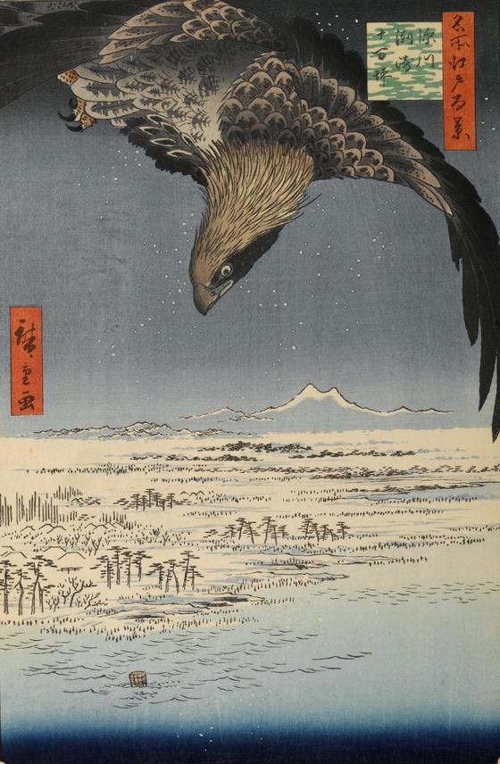히로시게의 독수리에서 보이는 깃털 형태를 그린 검은 윤곽선은 서양화에서 보지 못한 방법이다. 동양화는 먹선으로 대상을 정확히 그리고 채색을 하는 것이 특징이다. <후카가와를 날고있는 독수리(深川州崎十万坪) 1857> 우타카와 히로시게 ⓒpublic domain [wikipedia]