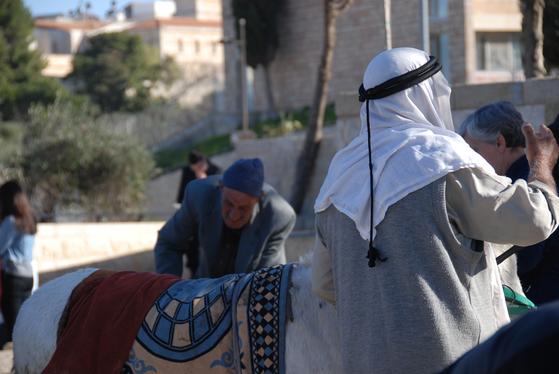 1이스라엘 예루살렘에서 나귀를 데리고 다니는 팔레스타인 사람. 2000년 전 예수도 나귀를 타고 예루살렘으로 들어왔다.