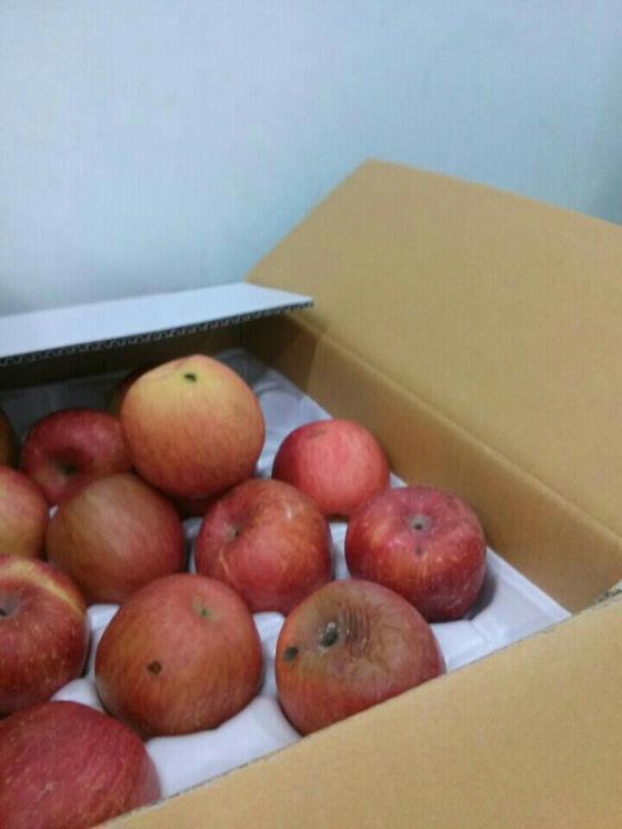 경기도 부천의 한 어린이집 원장이 썩은 사과 등 불량급식을 제공했다가 엄마들로부터 소송을 당해 손해배상을 물게 됐다. 사진은 아이들에게 제공된 썩은 사과. [사진 M어린이집 학부모]
