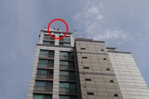 서울 20층 주상복합건물 옥상서 중년 남성 난동·위협…에어매트 설치