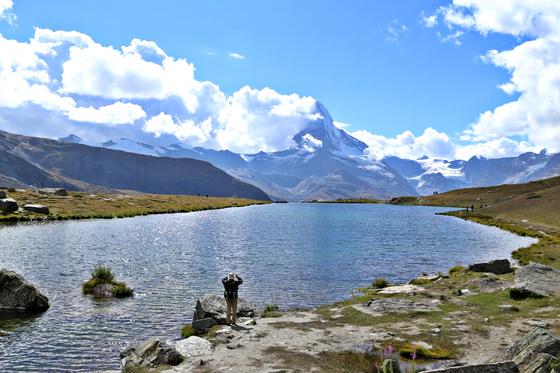 스위스 알프스 하이킹은 초급자도 충분히 도전할 만하다. 산악철도나 케이블카를 타고 고지대에 올라가 완만한 길을 걸어 내려오면 된다. 여행객이 체르마트 슈텔리 호수에서 알프스 스타 봉우리 마테호른(4478m)을 감상하고 있다. 양보라 기자
