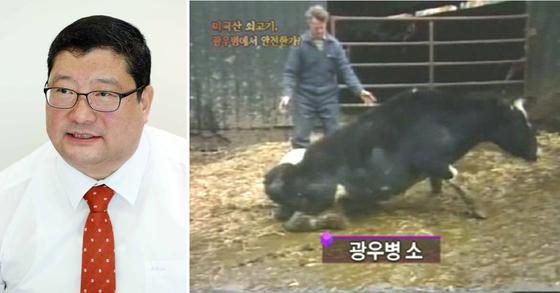 임수빈 변호사. 오른쪽은 2009년 MBC PD수첩 광우병편 화면 [중앙포토ㆍMBC캡처]
