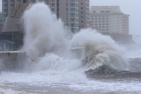 태풍 '콩레이'가 제주를 통과한 6일 오전 제주시 탑동 해안 방파제 위로 거대한 파도가 솟구쳐 올라오고 있다. [연합뉴스]