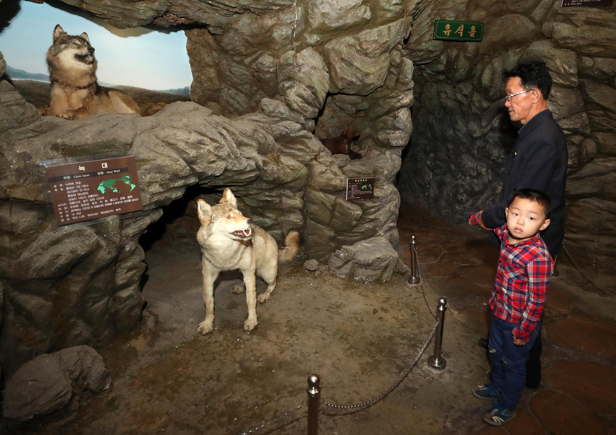지난 6일 평양 중앙동물원을 찾은 평양 시민들이 전시물을 살펴보고 있다. 평양사진공동취재단