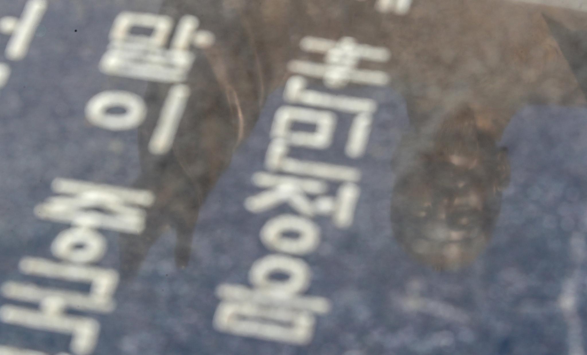 한글날을 하루 앞둔 8일 서울 광화문 광장에 설치된 훈민정음 위로 세종대왕상의 모습이 비치고 있다. [연합뉴스]