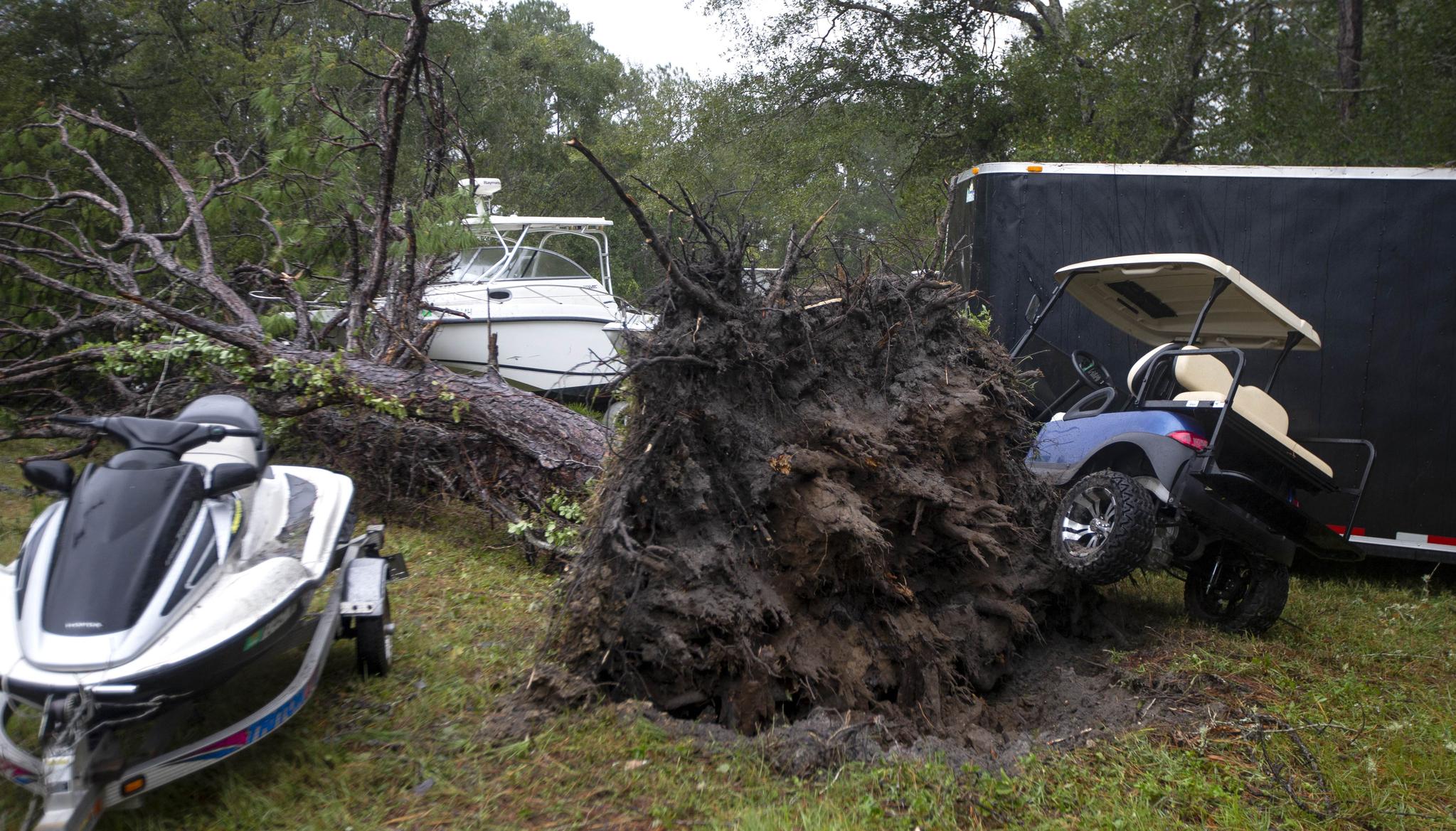 10(현지시간) 미국 조지아주 탈리아페로카운티 크로포드빌 일대의 한 나무가 태풍에 의해 뿌리채 뽑혀져 있다. [AFP=연합뉴스]