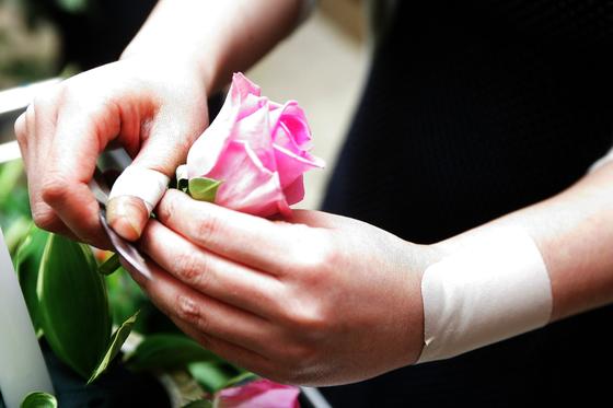 보통 꽃 이름에는 설화가 많이 담겼다. 이야기가 담기면 꽃을 기억하기도 좋고 특별히 더 애착이 단다. 무엇인가의 이름을 기억하고 부른다는 건 그 대상이 자신에게 특별한 의미로 다가왔다는 걸 뜻한다. 김태성 기자