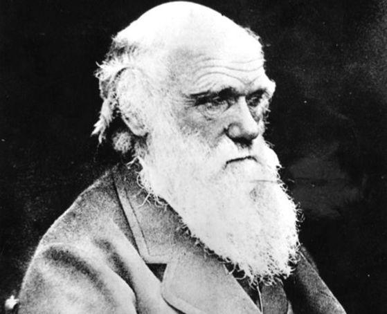 '종의 기원'을 쓴 찰스 다윈. 진화론을 주장한 다윈도 자연선택설에 반하는 일개미의 진화 비밀을 밝히지 못했다. [중앙포토]