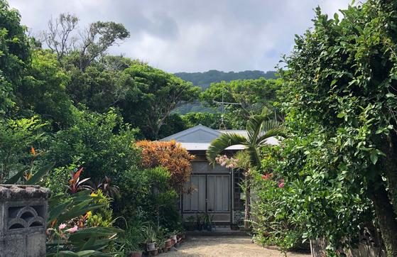 기카이 섬 남부 아덴 마을의 한 가옥. 여러 아열대 식물이 어우러져 자라는 마당의 모습이 이국적이다. 사진=김상진 기자