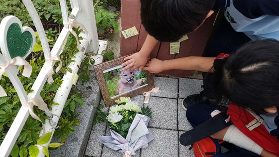 시민들이 대전오월드 사육장을 탈출했다가 사살된 퓨마를 추모하고 있다. [중앙포토]