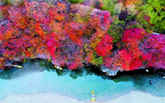 여행을 떠나기 좋은 계절, 가을이다. 국내여행 활성화 캠페인 '여행주간'에 맞춰 나들이에 나서면 특별한 할인 혜택을 누릴 수 있다. [중앙포토]