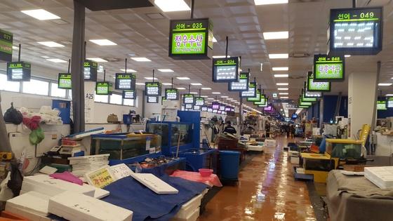 신 노량진수산시장. [중앙포토]