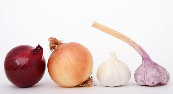 양파와 파는 반려동물의 위와 장에 자극을 주고 적혈구를 파괴한다. 불고기, 자장면 등 양파나 파가 많이 들어간 음식을 먹고 독성을 일으키는 경우가 많다. [사진 pixabay]