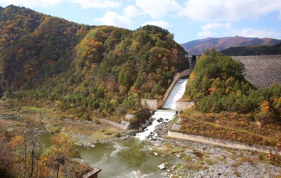 단풍 내린 도암댐. 지난해 10월 하순 촬영했다. 올림픽 아리바우길 4코스가 지난다. 손민호 기자