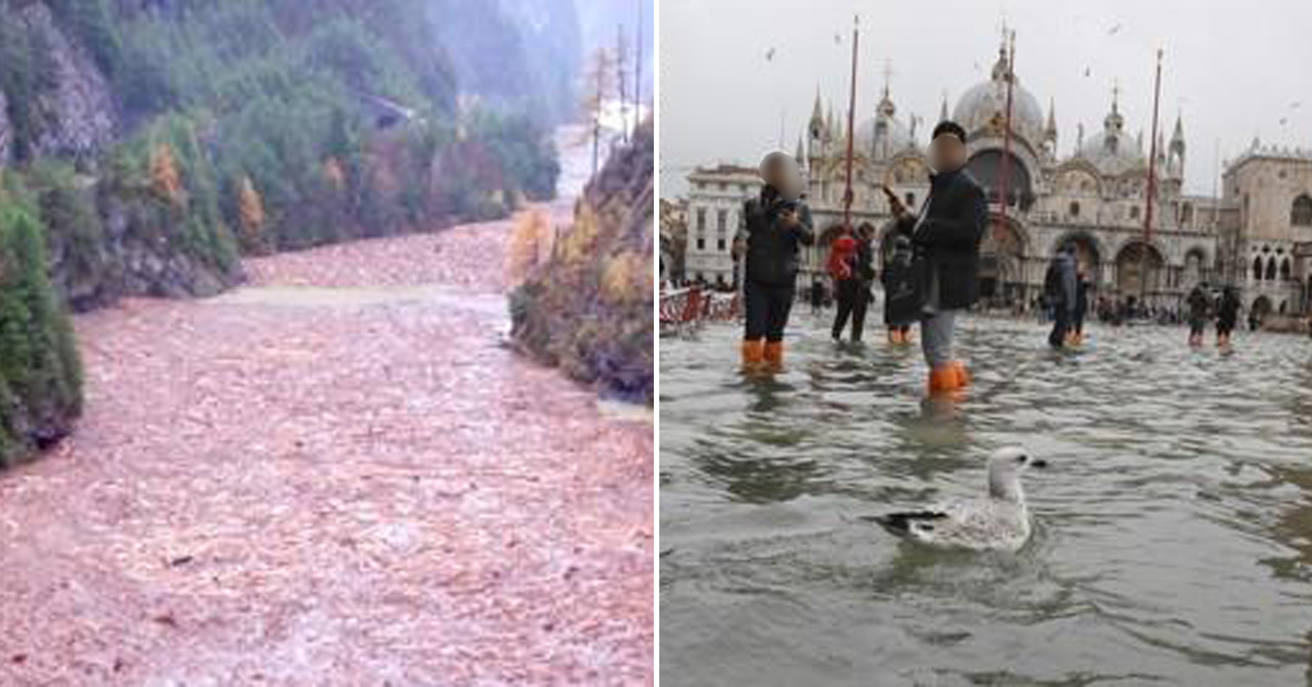 이탈리아 북동부 돌로미티 산악지대의 강을 가득 메운 나무(왼쪽)과 침수된 베네치아 산마르코 광장(오른쪽) [AFP, AP=연합뉴스]