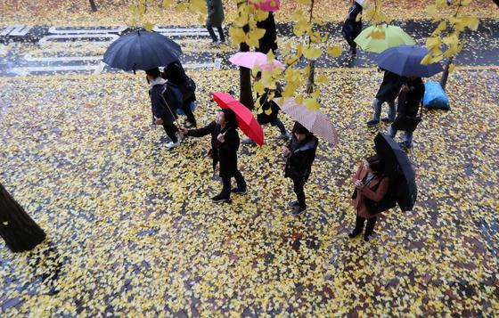 미세먼지를 씻겨줄 비가 8일 전국적으로 내렸다. 김상선 기자.