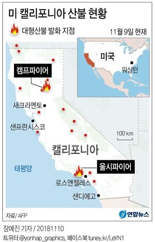 그래픽 [연합뉴스]