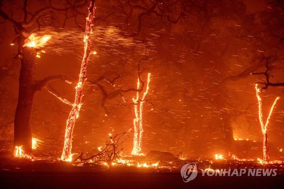 미국 캘리포니아주 북부의 뷰트카운티 파라다이스 지역에서 8일(현지시간) 대형 산불이 발생, 강한 바람을 타고 번지고 있다. 현지 언론은 산불이 급속히 확대되면서 이 지역에 주 당국의 비상사태가 선포됐으며 주민 2만7천 명 전원에게는 대피령이 발동됐다고 전했다.[AFP=연합뉴스]