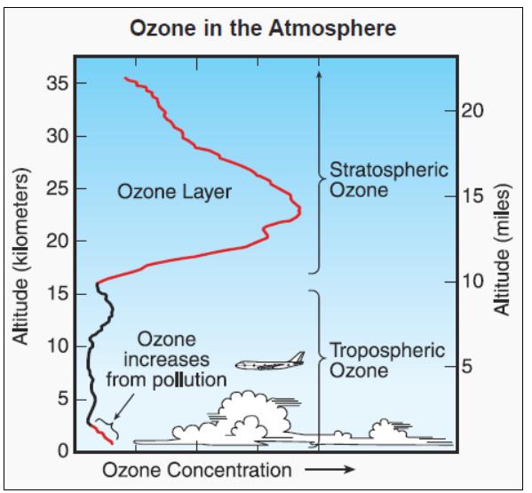 오존층(Ozone layer) 위치를 나타내는 곡선. 세로축은 고도(km)를, 붉은색과 검은색 선은 오존농도를 나타낸다. 대류권(troposphere)보다는 성층권(stratosphere)에서 오존 농도가 높다. 지표면 근처에는 다시 대기 오염으로 인해 오존 농도가 상승하기도 한다. [중앙포토]