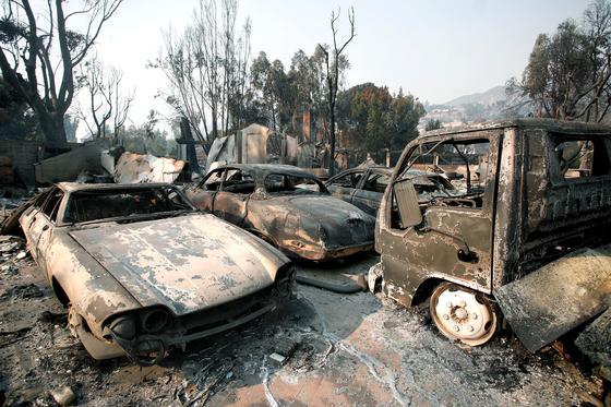 미국 캘리포니아주에서 대형 산불이 발생해 13일 현재 사망자 수가 42명으로 늘었다 .