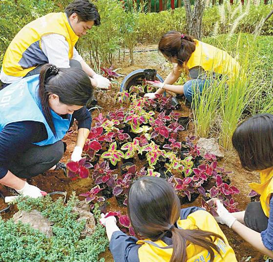 CJ헬스케어는 한국콜마와 함께 다양한 사회공헌활동을 펼치고 있다. 사진은 CJ헬스케어와 한국콜마 임직원이 서울특별시 어린이병원 정원에서 함께 화초를 심고 있는 모습. [사진 CJ헬스케어]