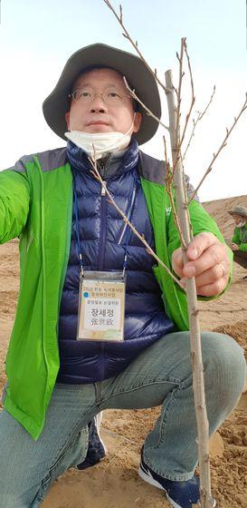 중국 쿠부치 사막에 포플러를 심고 있는 장세정 논설위원