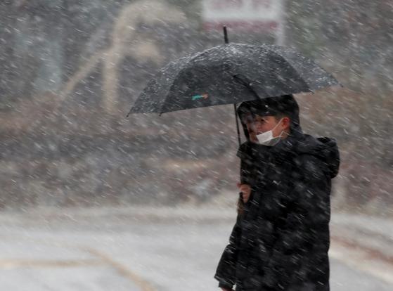 지난 21일 오후 강원 평창군 대관령면에서 주민이 첫눈을 맞으며 길을 걷고 있다. [연합뉴스]