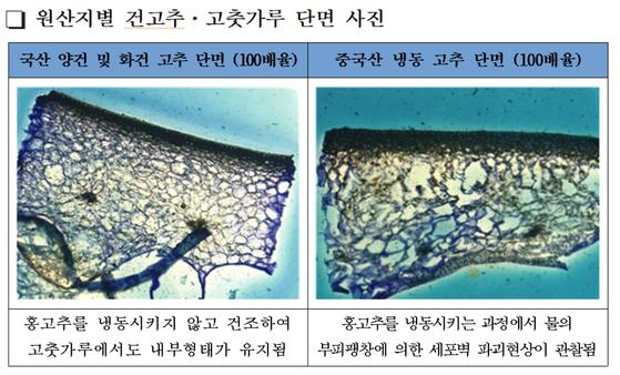 광학현미경을 통해 본 중국산 냉동고추로 만든 고춧가루와 국산 건고추로 만든 고춧가루의 세포벽 모습. [사진 국립농산물품질관리원 전남지원]