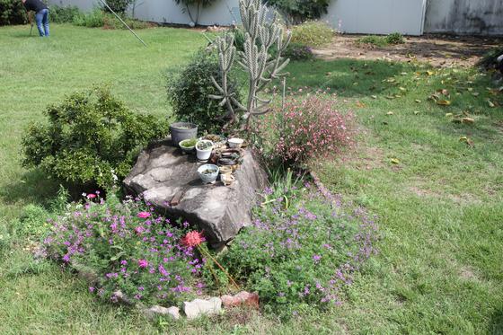 경산시 남천면 대명리 고인돌. 고인돌이 정원의 조경재로 쓰이고 있다. [사진 경산학회]