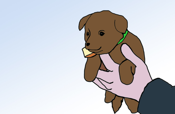 강아지 인형 관련 이미지. 본 기사 내용과 직접적인 관련은 없음. [중앙포토]