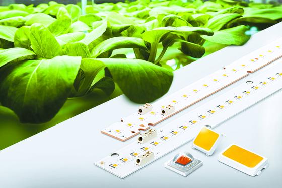 삼성전자가 지난 5월 출시한 식물 생장용 LED 광원 패키지 'LH351B Red'. 우수한 광효율과 방열기술로 농가의 전기 사용료를 낮출 수 있고, 기존 백색광원인 'LH351' 제품과 동일한 디자인으로 고객들에게 설계 편의성을 제공한다. [사진 삼성전자]