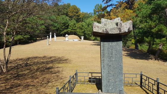 도암서원 왼쪽 산자락에 자리한 김면 의병장의 묘소와 신도비(神道碑). [사진 송의호]