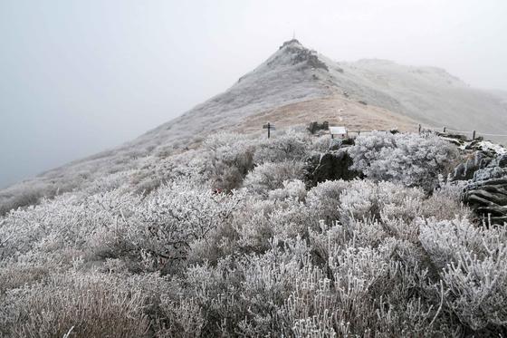 무등산의 설경. 뒤로 무등산 정상이 보인다. 정상은 군부대가 주둔해 있어 등산객들은 접근할 수 없다.