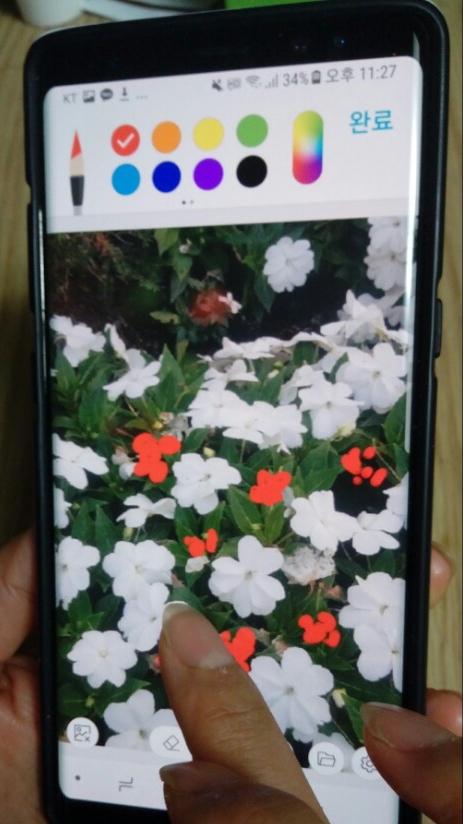 드로잉팁 3. 그리고 그 위에 원하는 색상으로 톡톡 찍어주기만 해도 하얀 꽃 위에 빨간 꽃이 피어나는 그림이 완성된다. [사진 홍미옥]